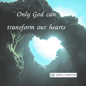 Only God can transform hearts