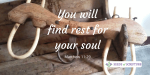 rest for your soul