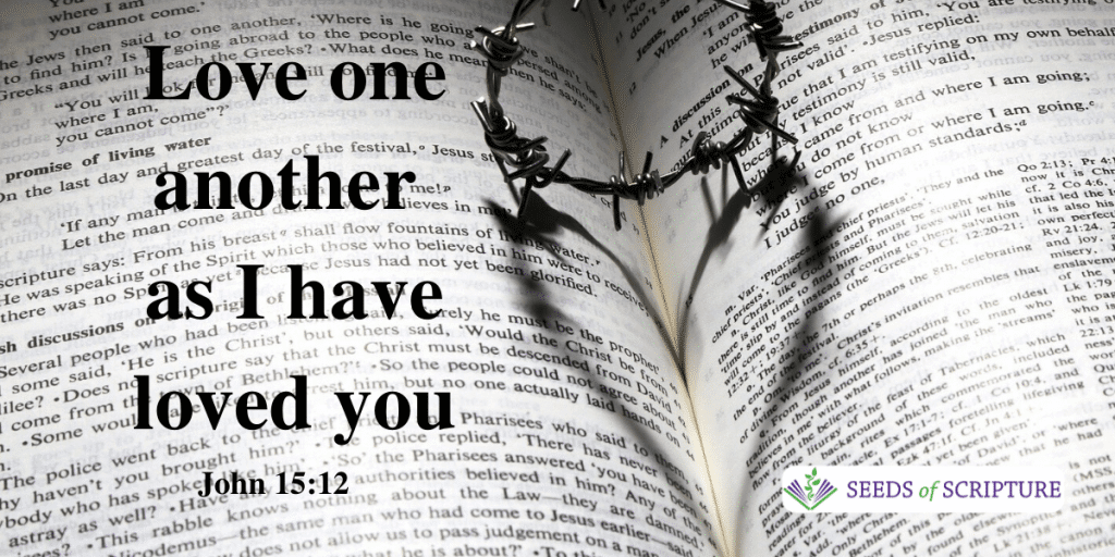 Love One Another as I have loved you