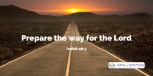 Isaiah 40.3